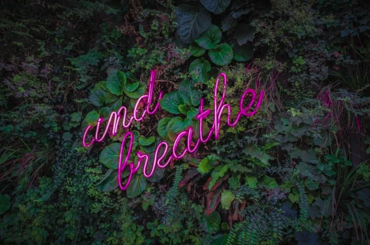 "Feature Photo by Victor Garcia on Unsplash; photo of glowing lights that say ""and breathe"" amidst a floral background"
